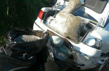 Sekuestrohen 102 kg kanabis, arrestohen 4 persona