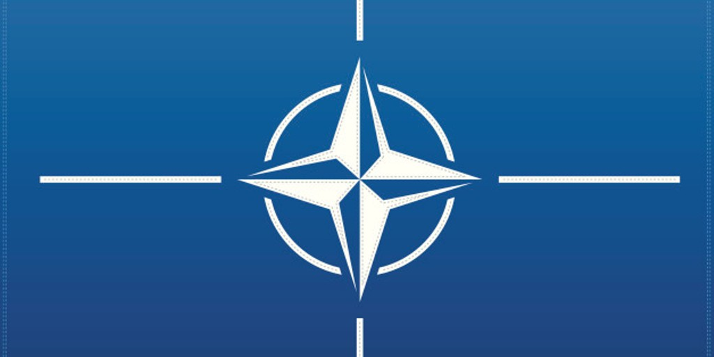 National security, is NATO enough?