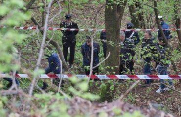 Kapen 48 kg kanabis në kufirin midis Shkodrës dhe Malit të Zi, autorët zhduken në pyll