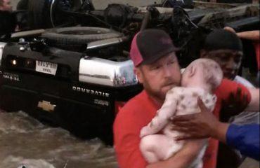 SHBA, shpëtoi foshnjet në makinën e përmbysur nga uragani (Video)
