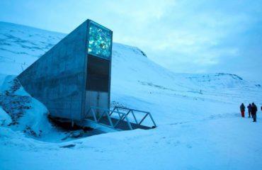 """""""Arka e Noes"""", Norvegjia rrit nivelin e sigurisë në tunelin e farërave bujqësore"""
