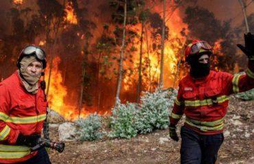 Portugali, rrëzohet avioni që tenton të shuajë zjarret