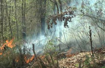 Temperatura deri në 40 gradë, Emergjencat-vendorëve: Kujdes me zjarret