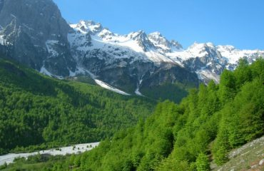 Shqipëria mbron speciet e rralla të zogjve