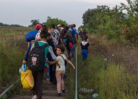 Alarmi i Francës Azilantët nga Shqipëria po dyfis