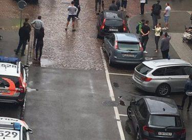 Horror në Zvicër, si u plagosën pesë persona me moto-sharrë