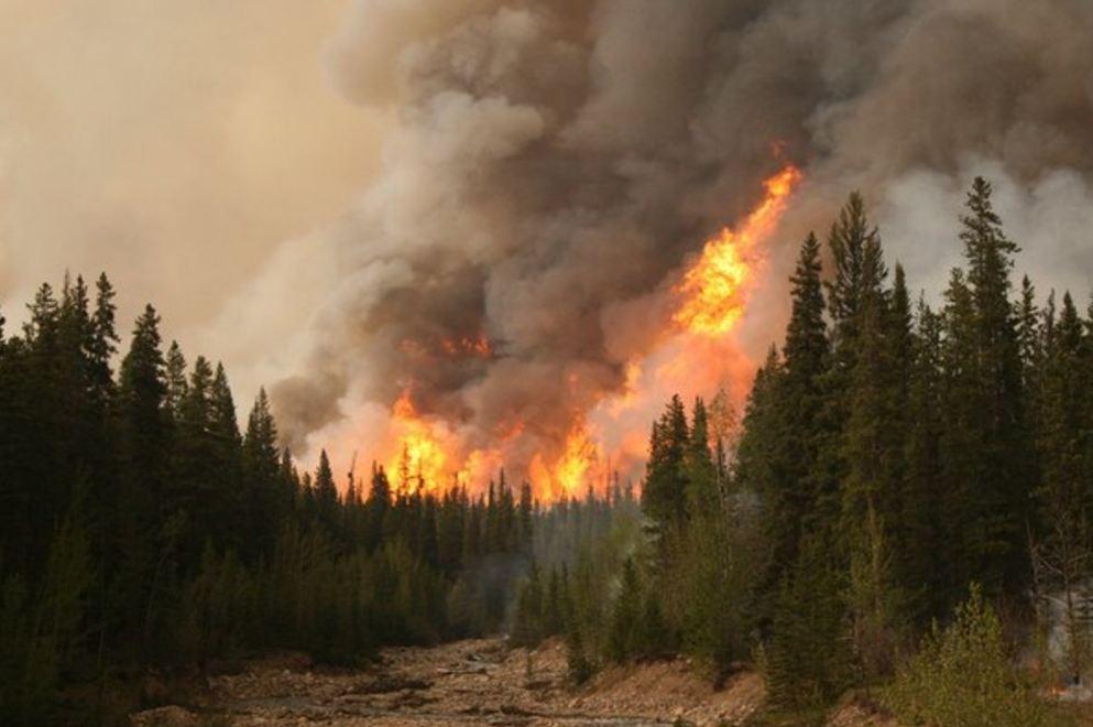 Situata problematike nga zjarret, EC: 16 vatra në 8 qarqet e vendit