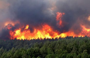 Zjarri kërcënon Lurën, por edhe Voskopojën