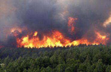 Zjarr i madh në Patos, autoritetet: Situata është kritike
