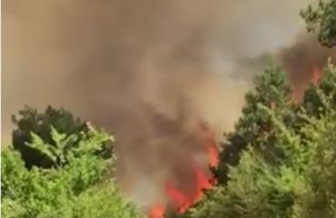 Zjarri bllokon qarkullimin, trafik në rrugën Levan-Fier