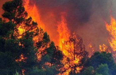 8 vatra zjarri në mbarë vendin, terreni thyer favorizon flakët