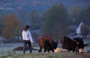 Një vajzë bareshë krah mrekullive të natyrës së vendit tonë!  (Foto)