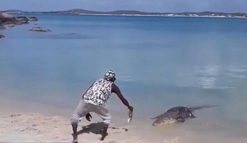 Loja e rrezikshme me krokodilin, shikoni si ia tund peshkun në turi ky djalosh (VIDEO)
