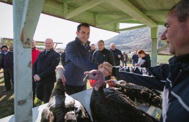"""Tregu i Baldushkut, Veliaj: Blini gjelin """"firmato"""" të Shqipërisë"""