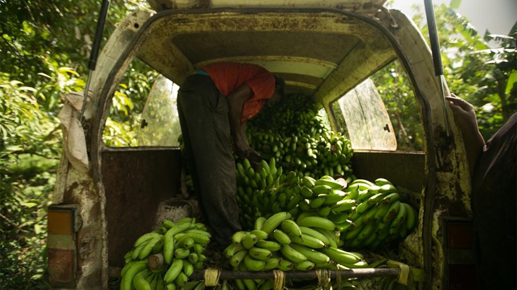 """""""ANTENA JASHTË FAMILJES"""": Flet shoku Anastas Angjeli: Piratët e Somalisë më morën peng, me gjithë banane"""