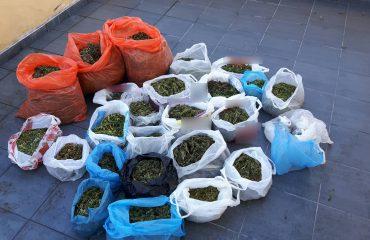 Kapet në Greqi shqiptari me 25 pako drogë