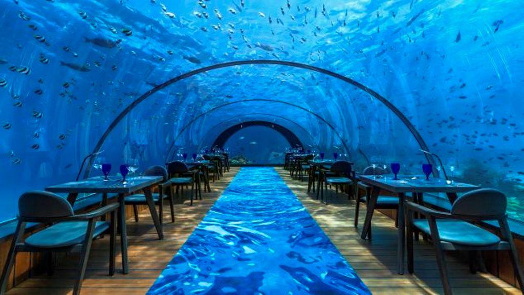 Ky është restoranti më i madh në botë nën ujë, të ushqehesh duke soditur koralet oqeanike