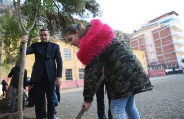 Viti i Skënderbeut, 550 mijë pemë nëpër shkolla