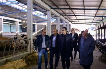 Peleshi: Siç bëmë me thertoret, do bëjmë me të gjithë ata që tregtojnë ushqime