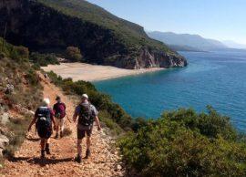 Turizmi, sezoni i sivjetshëm mes nismës antiinfor