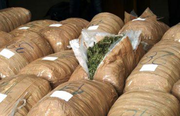 Transportoi drogë për llogari të trafikantëve në vëzhgim, shpallet kërkimi për policin
