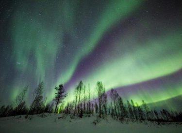 Aurora boreale, pamja spektakolare që vjen nga pyjet finlandeze