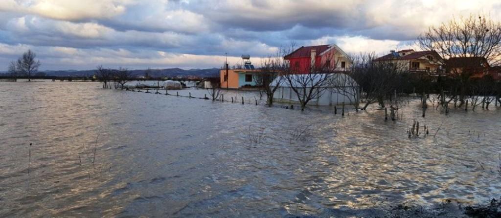 Përmbytjet, situata alarmante në Shkodër, mbi 2000 ha tokë nën ujë