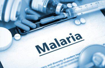 Malaria, sa e rrezikshme është sëmundja infektive edhe sot