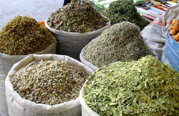 Industria e bimëve mjekësore: Euro po na falimenton, na ndihmoni