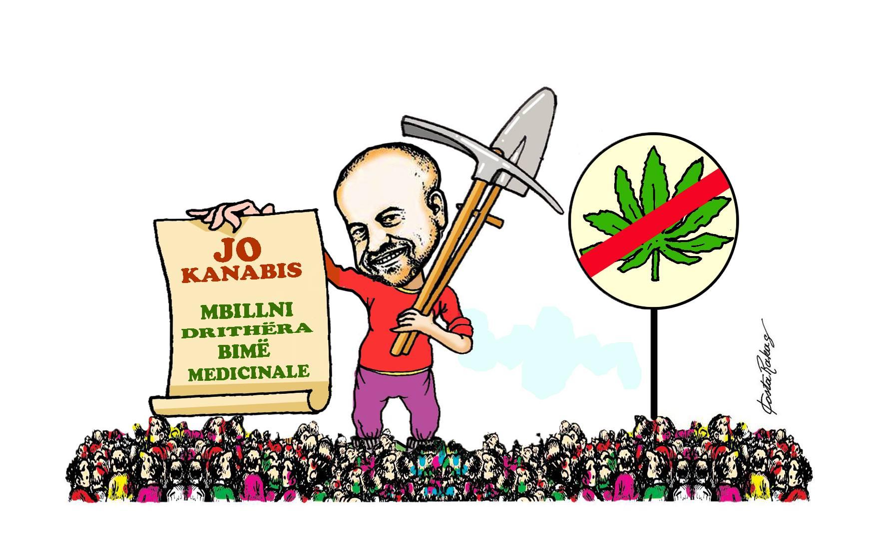 Karikatura e ditës në Albanian Free Press nga Kosta Raka (12 qershor 2018)