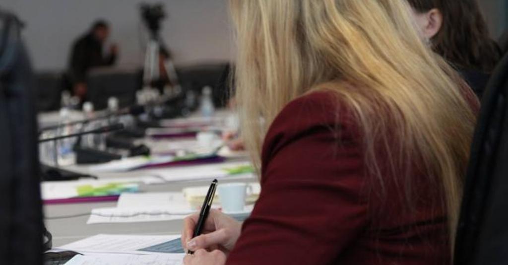 """""""Joshje"""" nga biznesi, po shtohen femrat pronare e administratore"""