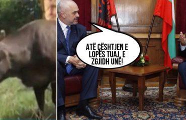 """""""ANTENA JASHTË FAMILJES""""/ Edi Rama me Kryeministrin e Bullgarisë, diskutuan për lopën Penka"""