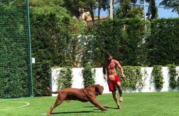 """BARÇA/ Humb """"rivalin"""" në Spanjë, Messi stërvitje me qenin"""