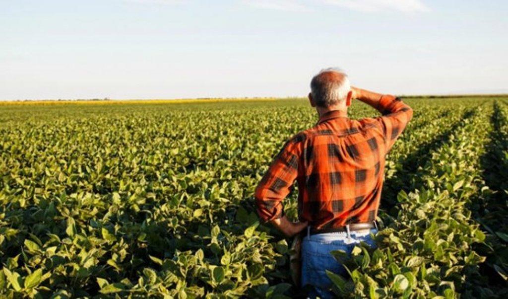 BE dhe qeveria 90 milionë euro fonde për bujqësinë, aplikimet nisin në shtator (kush përfiton)