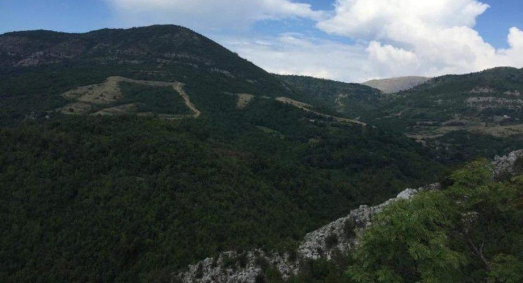 Berisha publikon fotot e kanabisit: Ja arat e narkopartisë në malet e Krujës