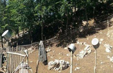 Nuk ishte vetëvrasje, policia zbardh vrasjen e bariut në Tropojë: Autori erdhi nga Tirana