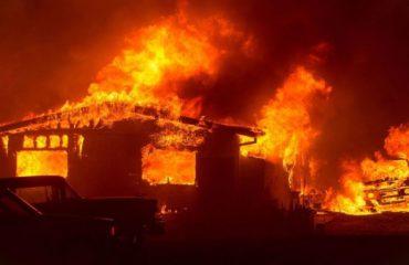 Zjarret  në Kaliforni, 50 të vdekur