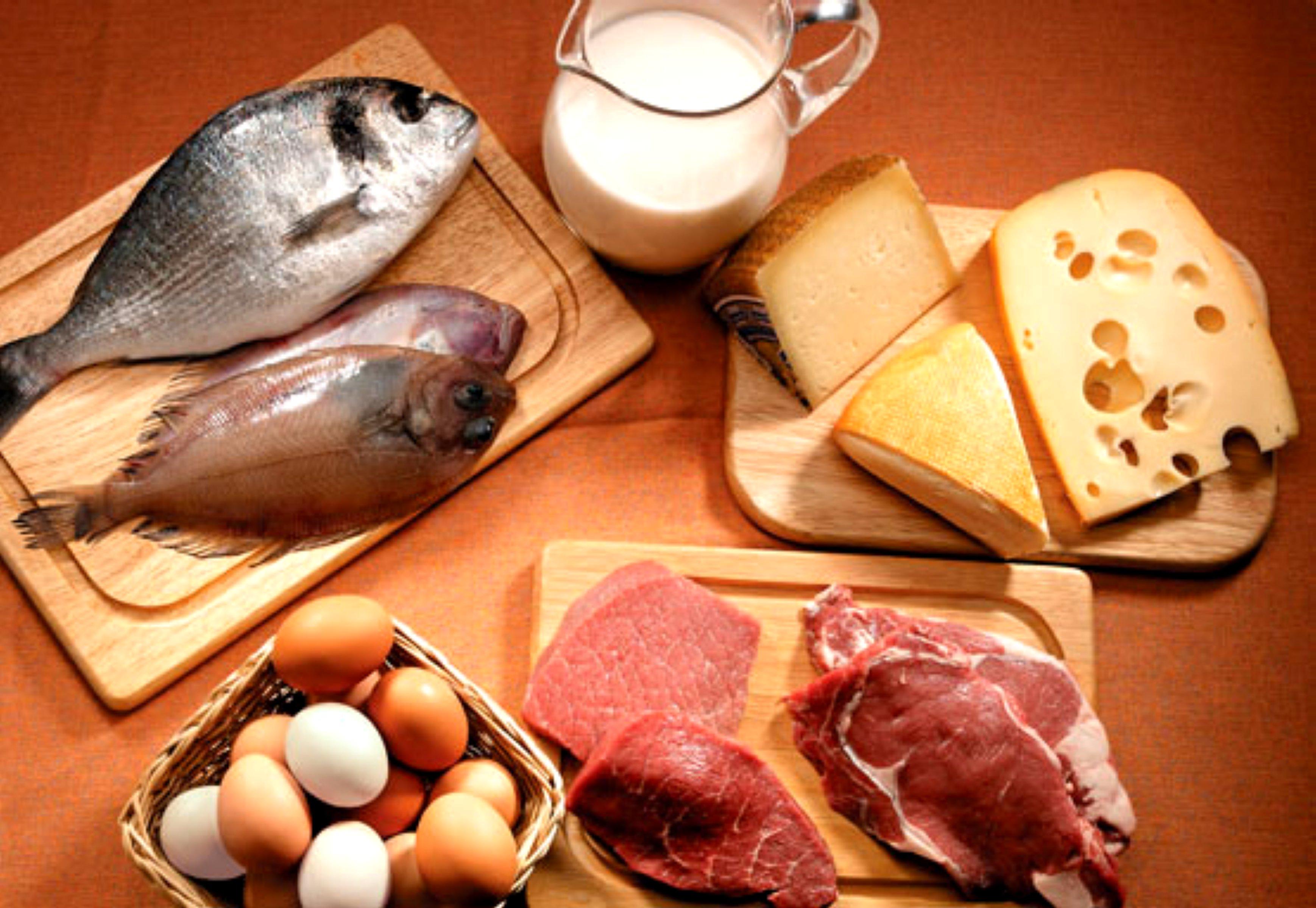 Dieta me proteina