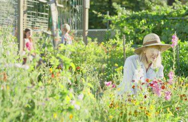 Suedia vendos të punësojë gjyshet, që duan të kujdesen për nipërit dhe mbesat e tyre