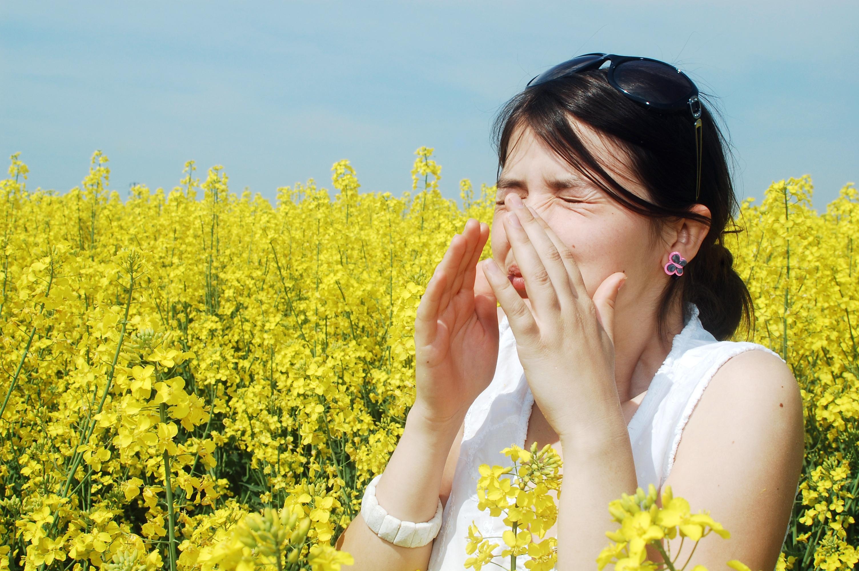 Alergjitë e stinës, si krijohen problemet në rrugët e frymëmarrjes?