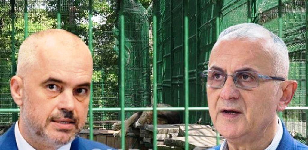 Marrja e mandatit nga 4 deputetë të LSI, Vasili: Punë gjallesash elektorale në kopshtin zoologjik të Ramës