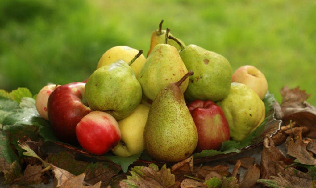 Dieta me mollë e dardha