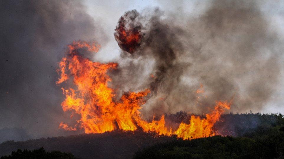 Greqia në flakë, këtë herë tre vatra pranë Lamias