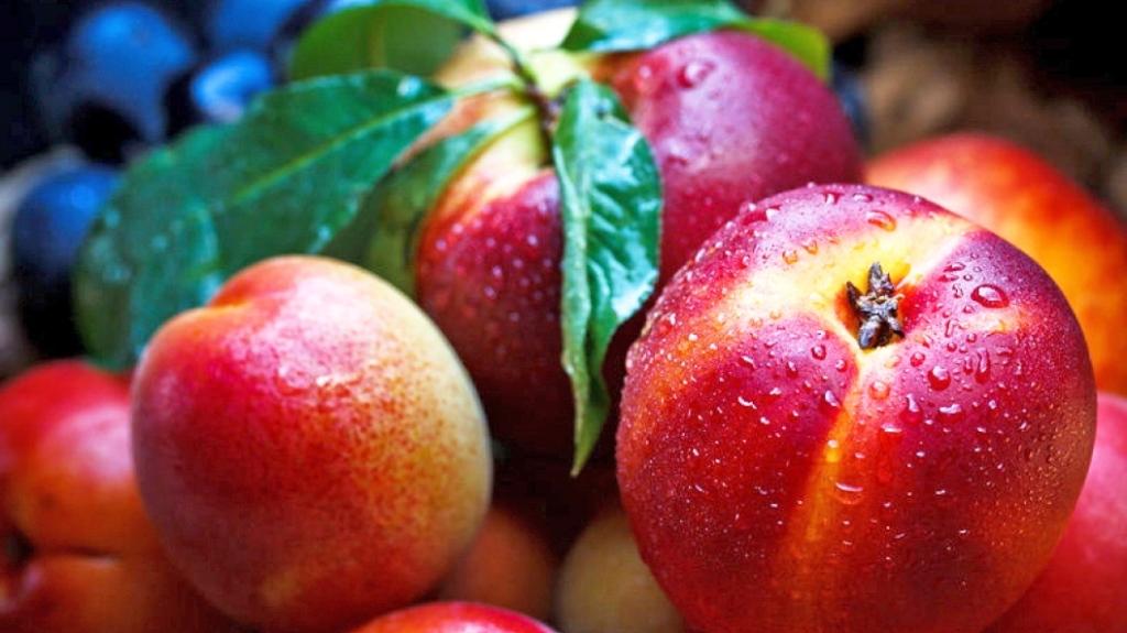 Vetitë dhe vlerat shëndetësore të pjeshkës e nektarinës!
