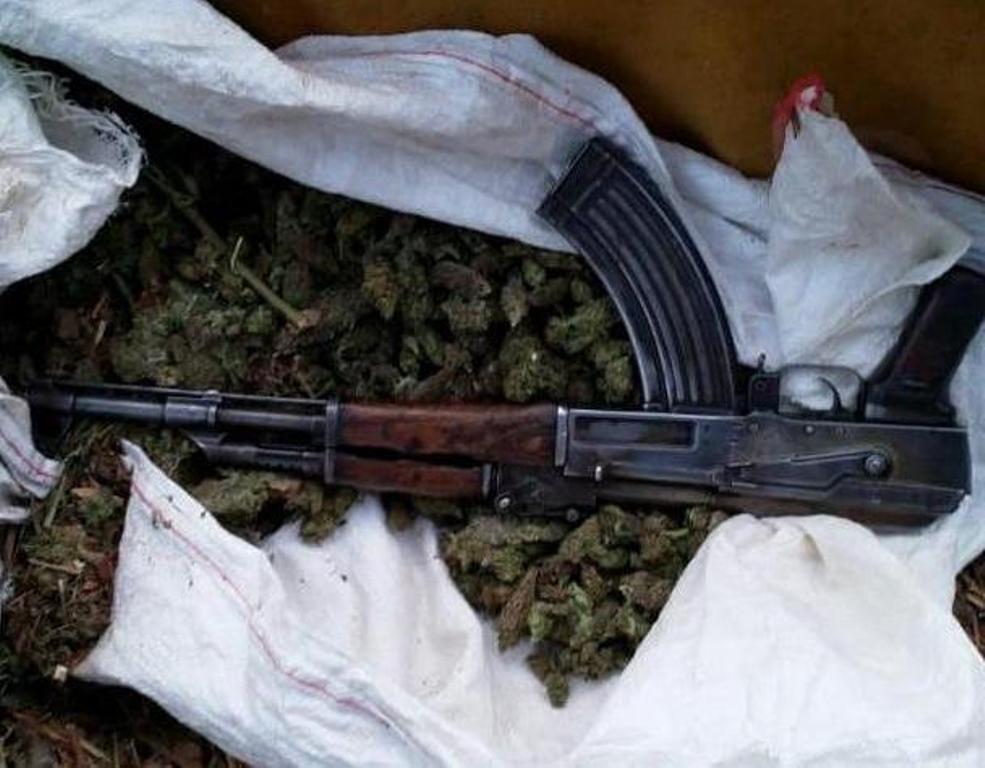 Fushë-Arrëz/ Zbulohet parcela me kanabis, kapen armë e municione, tre të rinj në pranga