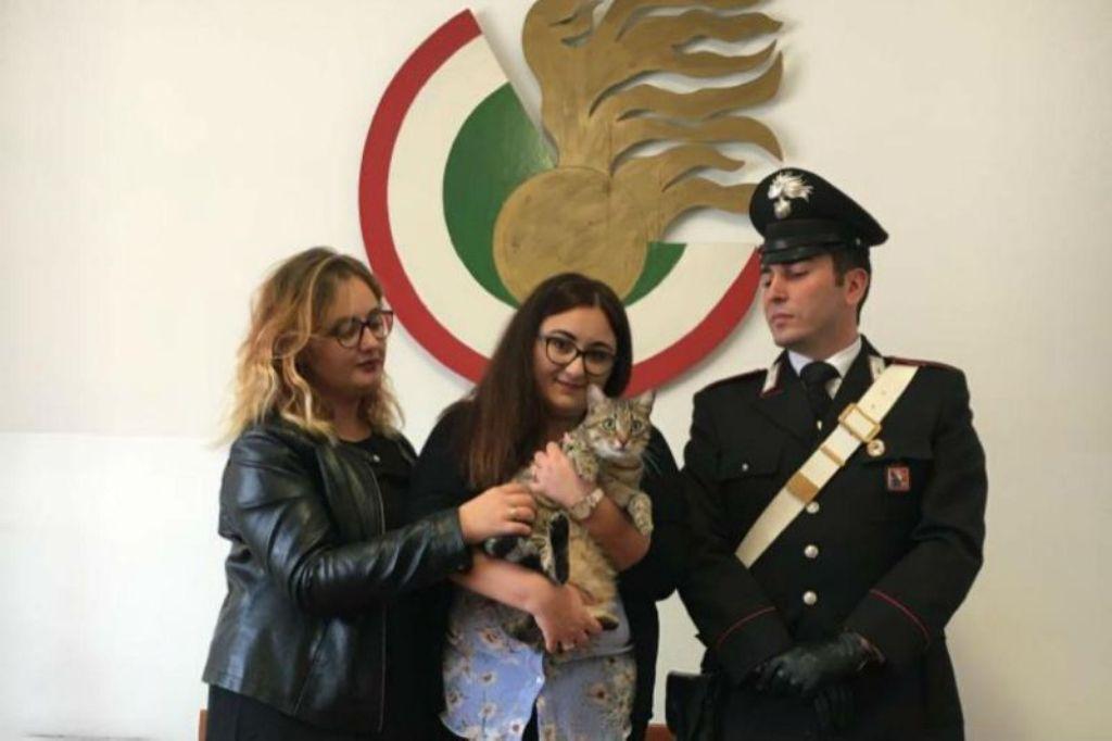 Itali/ Gjeti maçokun në rrugë dhe kërkoi 1 mijë euro të zotit t'ia dorëzonte, arrestohet gruaja shqiptare
